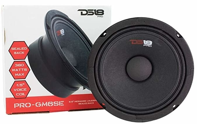 DS18-PRO-GM6SE Speaker for under 100